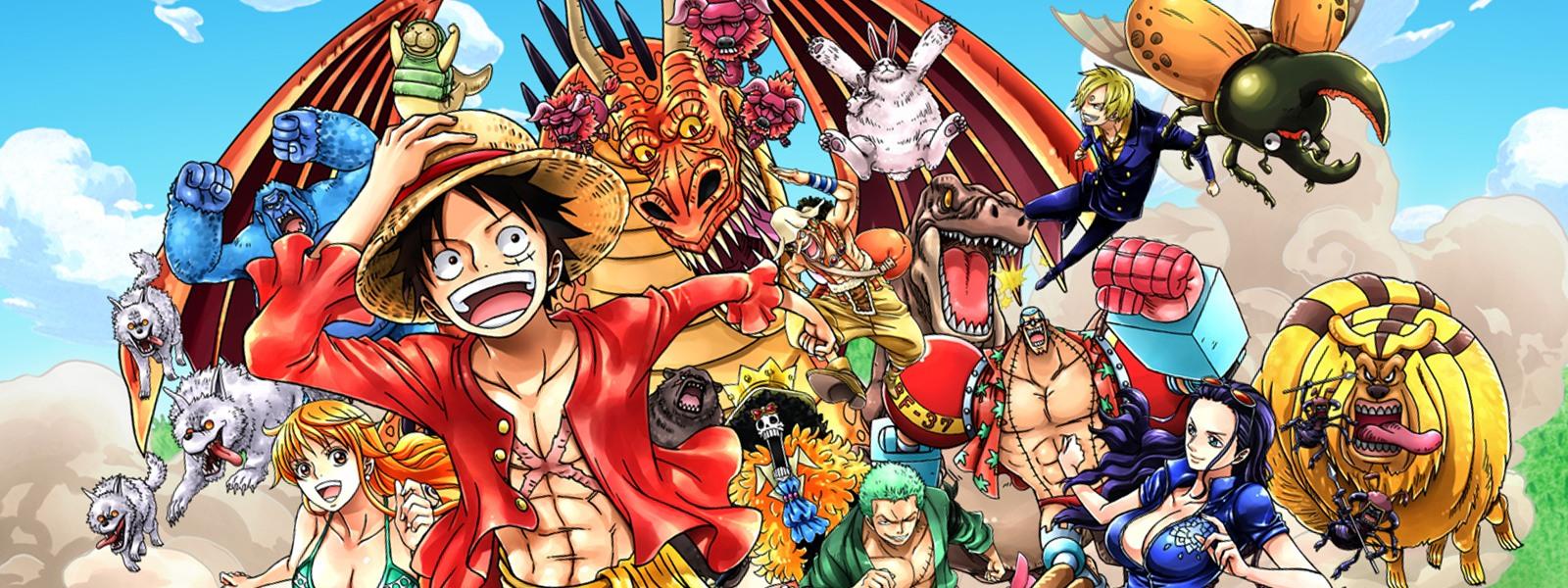 One Piece  Toonami Wiki  FANDOM powered by Wikia